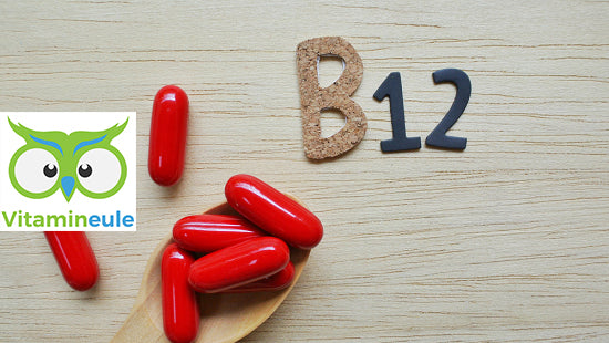 Which foods contain vitamin B12?