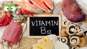 Vitamin B12 - effect, deficiency and food