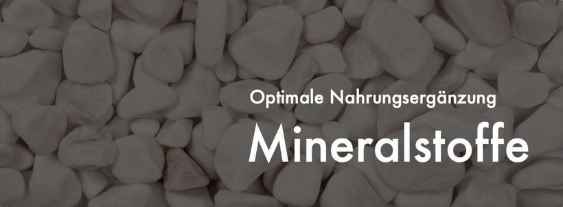 Minerals from Vitamineule®