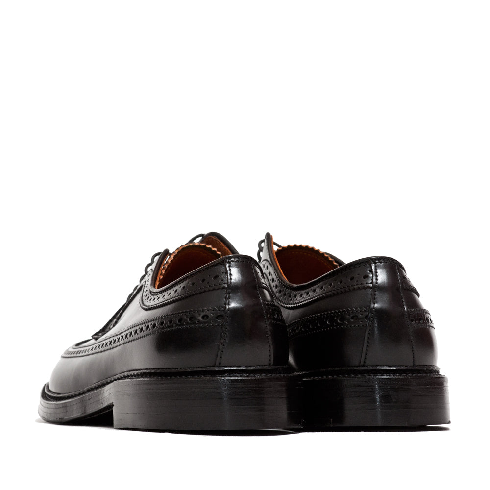 Alden Black Cordovan Longwing Blucher at shoplostfound, back