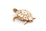 IncrediBuilds Animal Collection Sea Turtle 3D Wood Model and Booklet