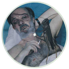 "The Powers That Be- AmRep ""Research & Development"" Series picture disc 7"""