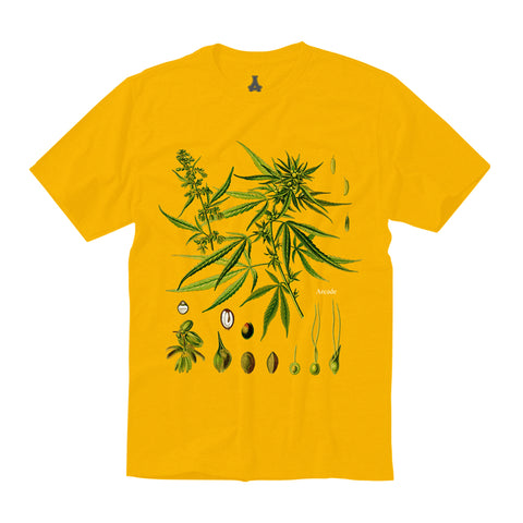 Personal Growth Tee (Gold)