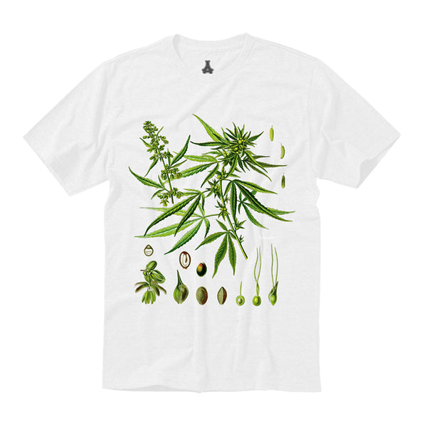 Personal Growth Tee (White)