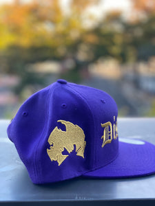 "DISTROLORD "" 7 "" PURPLE  SNAP BACK (GOLD TEXT)"