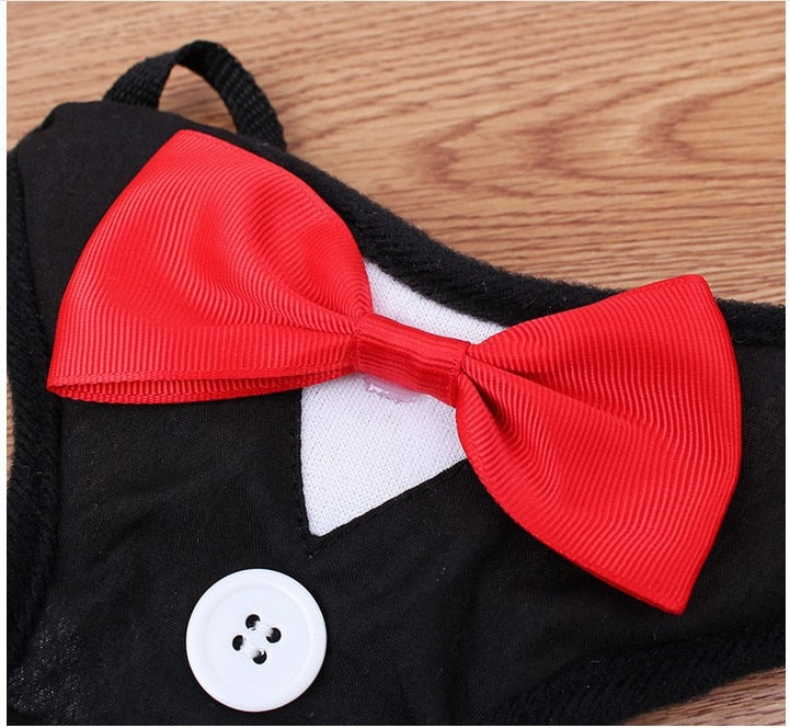 Waistcoat and Bow Tie/Tuxedo  Harness Vest For Small Dogs. Choice of 2 Colours. - weddingniknaks
