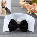Adjustable Small Dog Bow Tie Collar Available In Black Or Red-weddingniknaks