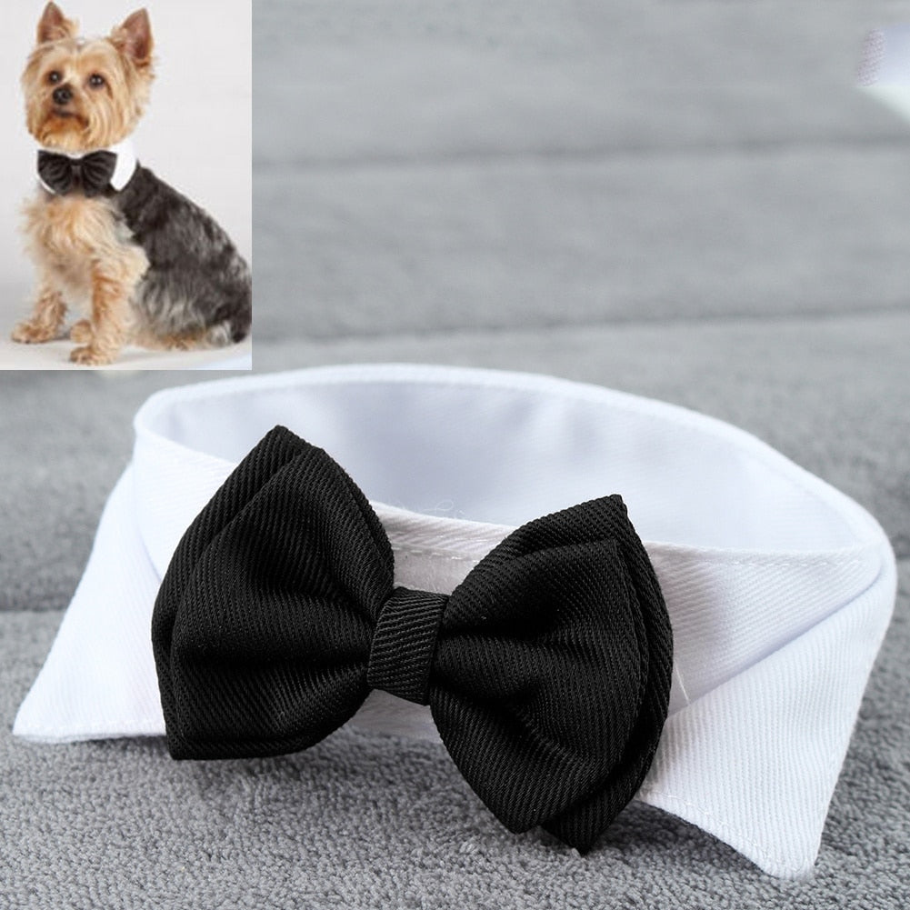 Adjustable Small Dog Bow Tie Collar Available In Black Or Red - weddingniknaks