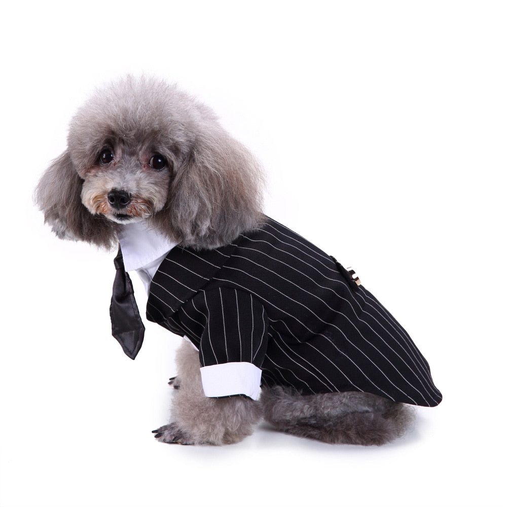 Dog Wedding Suit, Striped Tuxedo and Bow Tie Available In 4 Sizes and 5 Colour Options-weddingniknaks