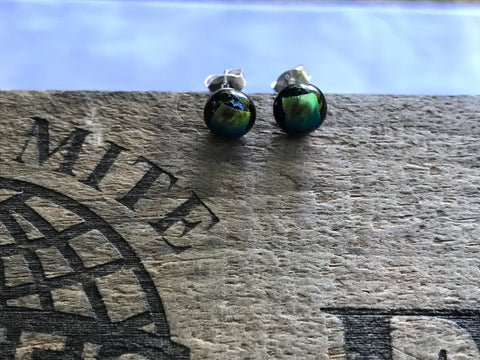 Goldish Green Dichroic Glass Post Earrings