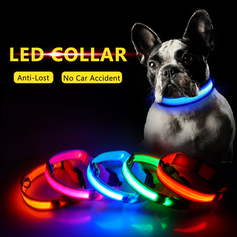 LED Dog Collar for Dogs & Cats with USB Charging