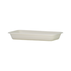 Sugarcane Flat Container | WHITE