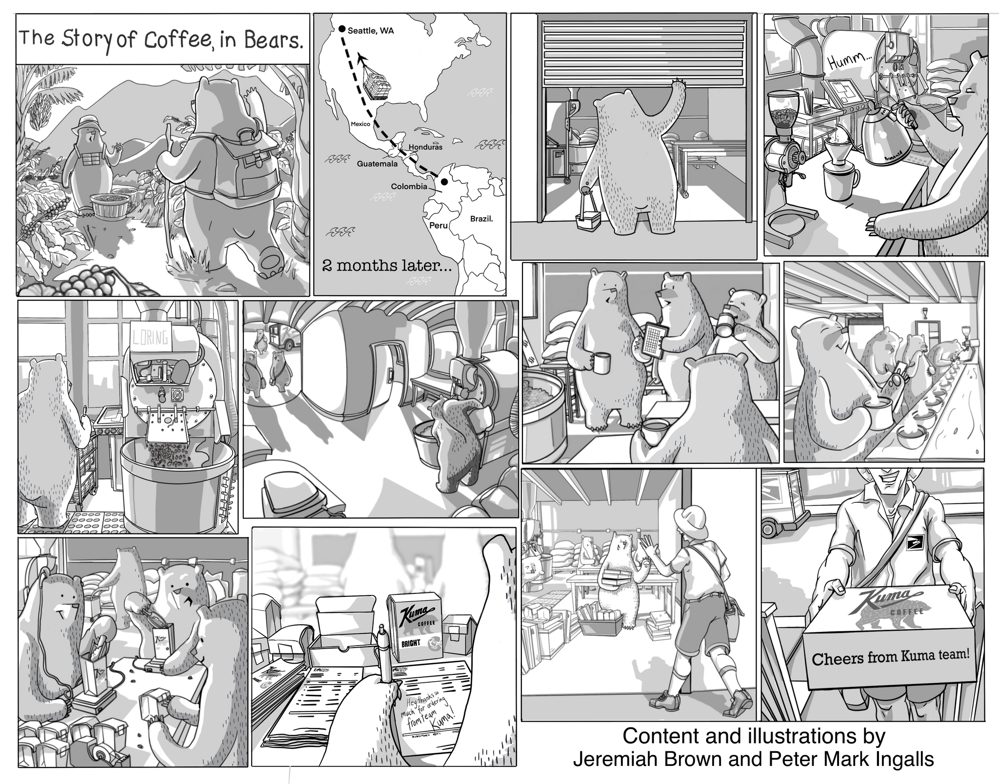 a hand drawn comic of the story of coffee, showing bear characters sourcing coffee, coffee shipping, scenes from a roastery where characters roast, pack and taste coffee. Finally the coffee going in a package and shipping with USPS to your home