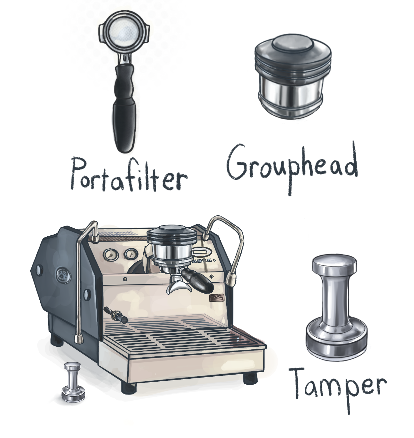Hand drawn illustration of espresso machine with tamper, group head and portafilter labeled