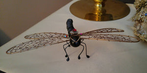 Bronze and Black Dragonfly