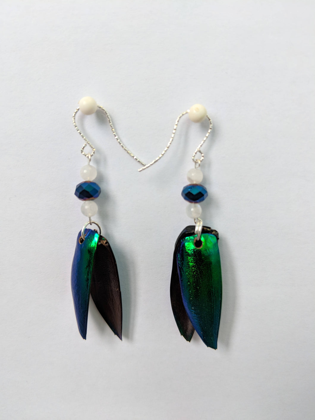 Real Jewel Beetle Earrings with Rainbow Moonstone