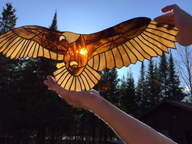 Stained Glass Eagle in Flight