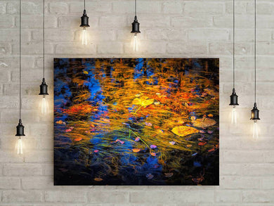 Digital colour Painterly abstract wall art, Home or cottage decor, Photo of wetland Titled: My Monet for Pepper DIY printable art work for $9.85