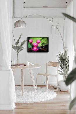 Digital JPEG files of wetland print, Colour wall art of Pink Water Lily Flowers Titled: Water Lilies DIY printable art work for $9.85