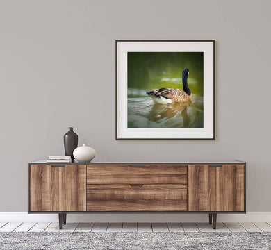Digital colour photo download Wall art print Canada Goose at the Centre d'interprétation Becs et Jardins Nedelec QC Titled: serenity. DIY printable art work for $9.85