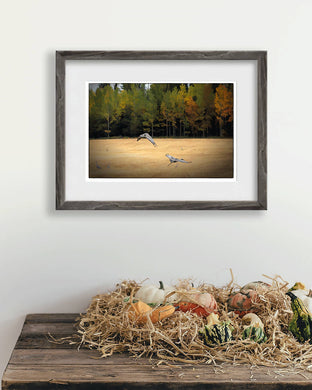 Digital files for a muted fall colour print, Wall art of cranes landing in a field, Photo Titled: Sandhill Cranes DIY printable art work for $9.85