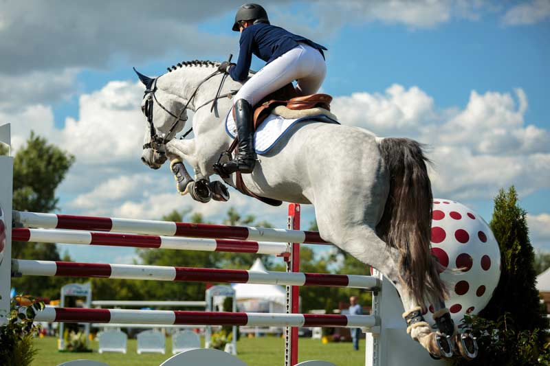 horse-showjumping