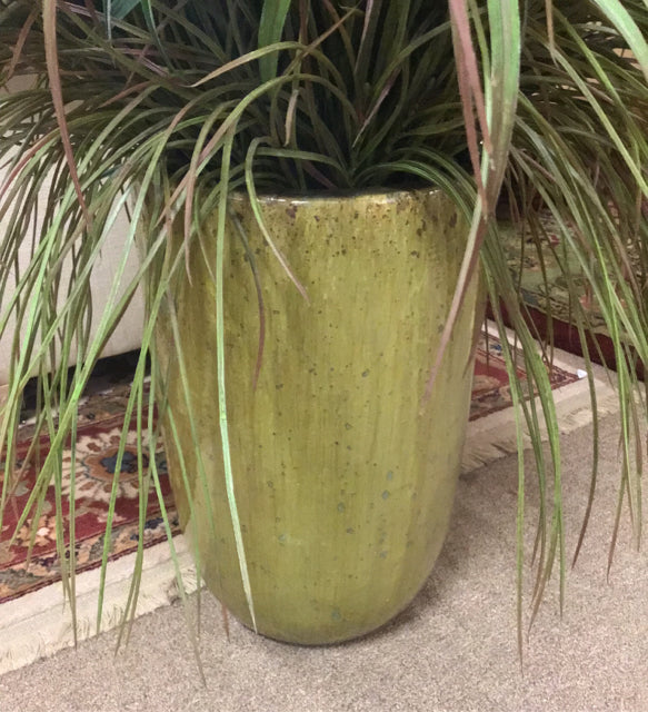 Tall Grass with Pot