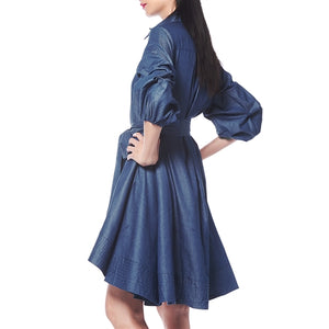 Denim Shirt Dress at {price}