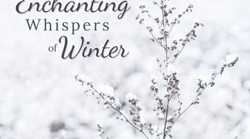Enchanting Whispers of Winter