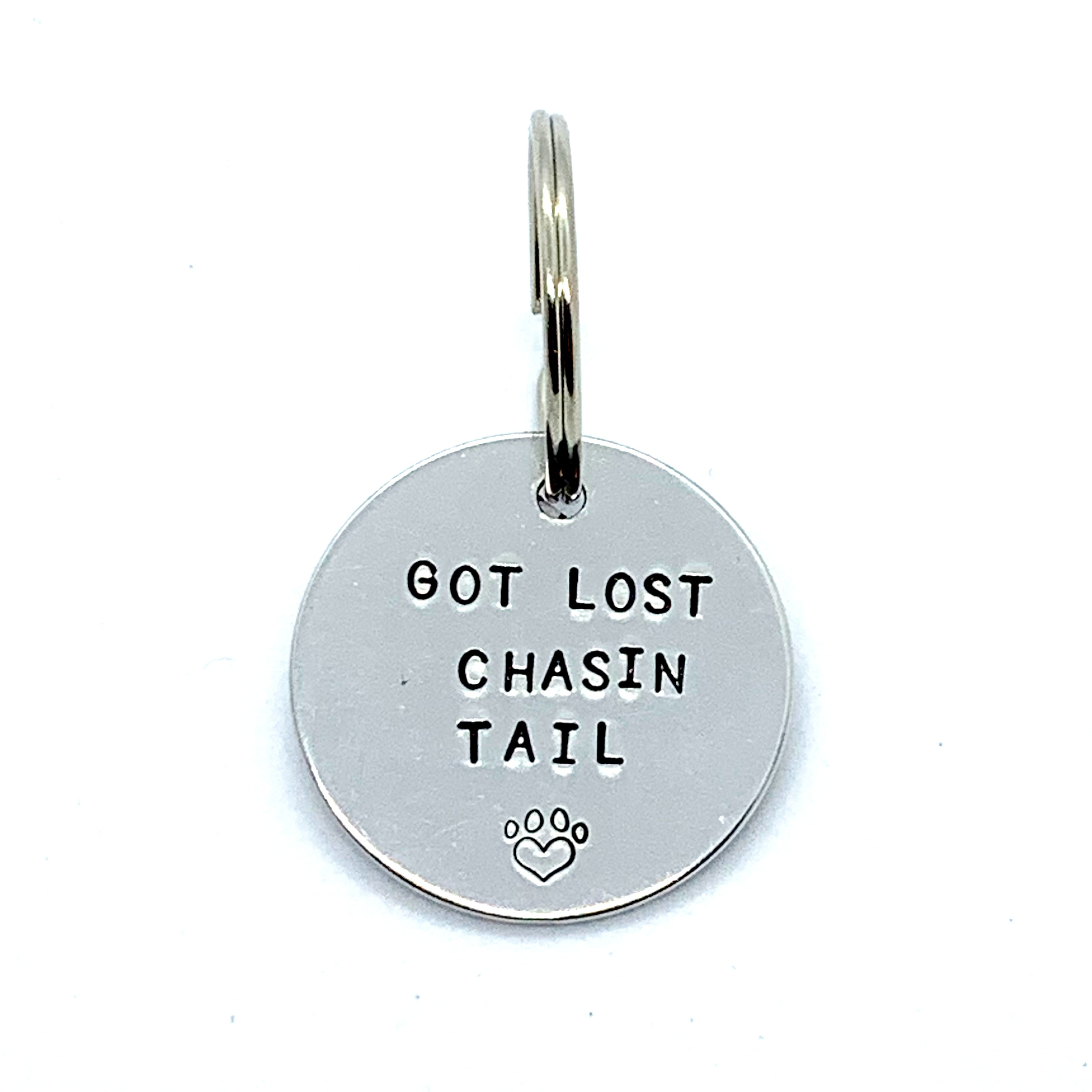Dog Tag - Got Lost Chasin Tail
