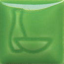 bigceramicstore-com,Duncan Envision Glazes Apple Green IN1639,Duncan,Glazes - Low-fire