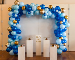White Back Drop, Balloon Garland & Plinths