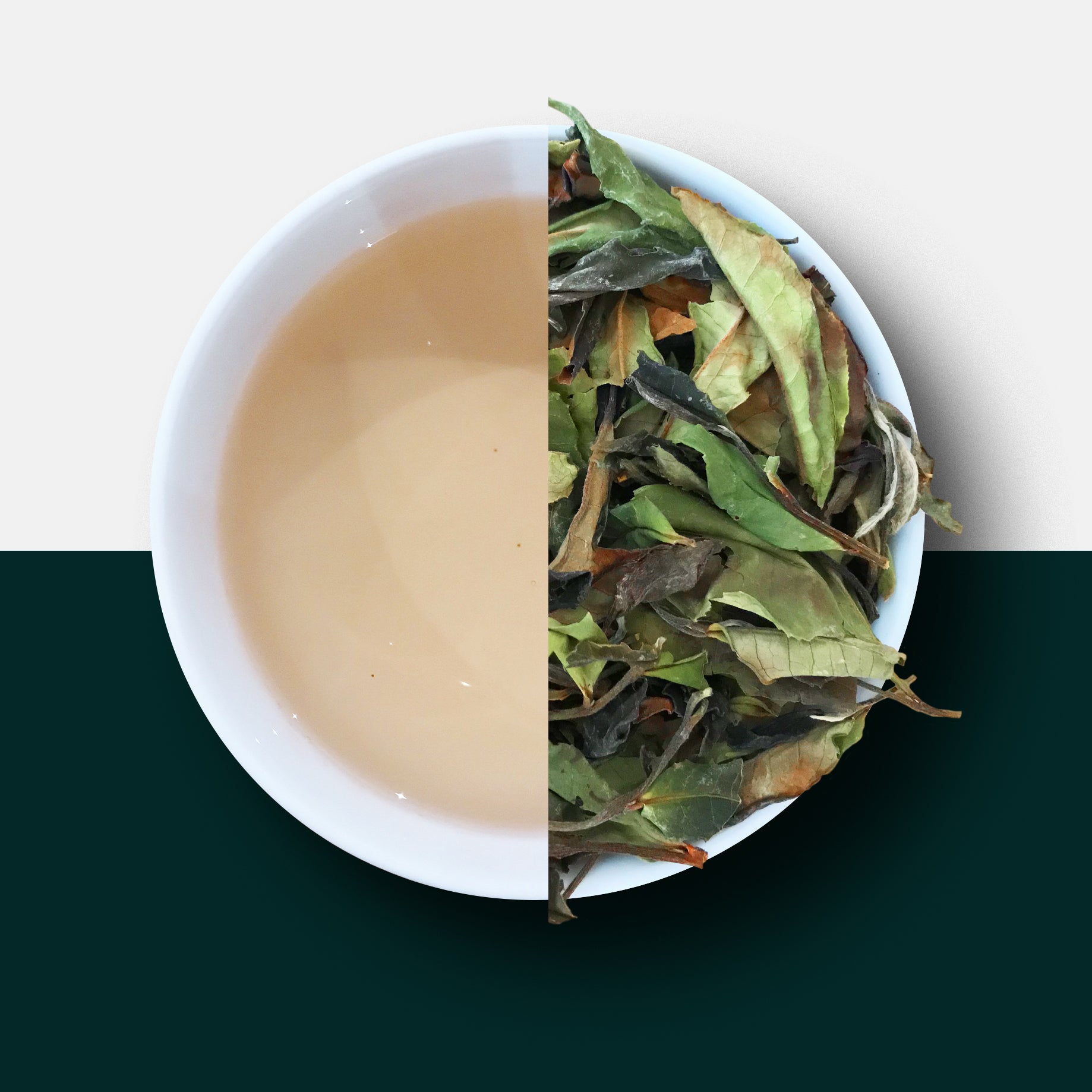 White Tea - Malawian Rare White Peony Loose Leaf Tea and Liquor
