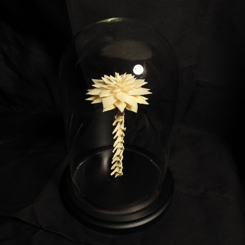 Bone Flower with Glass Dome