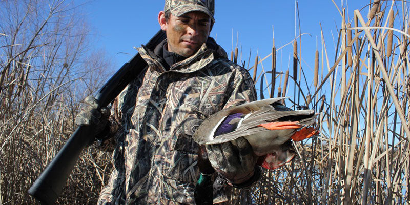 DUCK HUNTING: THE BEGINNER'S GUIDE