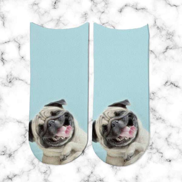 Socks Pug Laugh