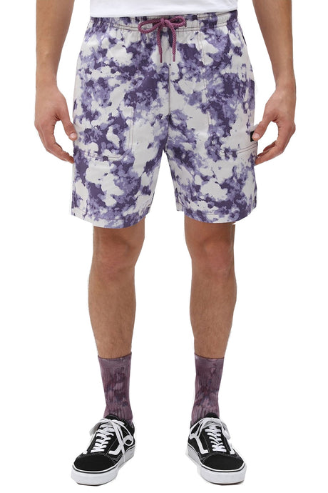 DICKIES Shorts Sunburg Purple Gumdrop - Circle Collective