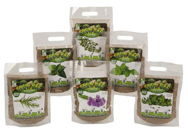 6 ASST QUICK GROW HERBS WITH MAGIC SOIL