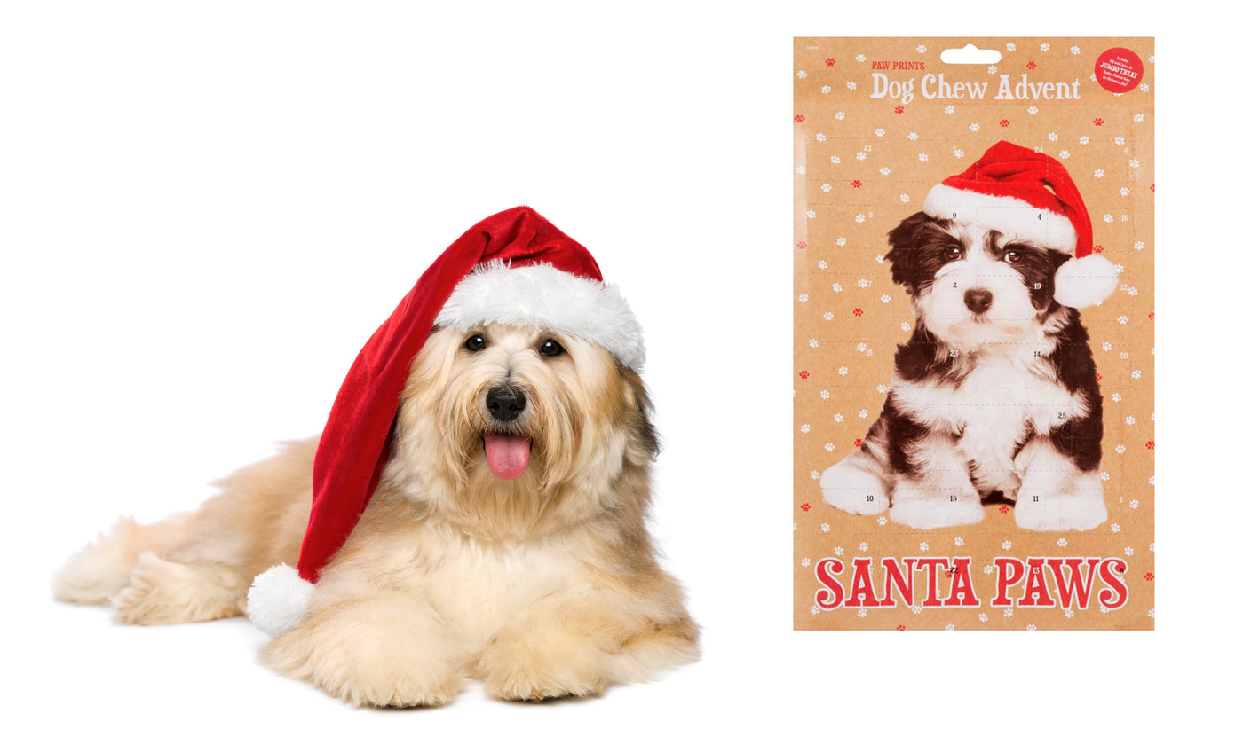Dog or Cat Chew Christmas Advent Calendar