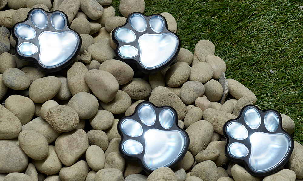 GloBrite Paw Print Solar Lights (Pack of 4)