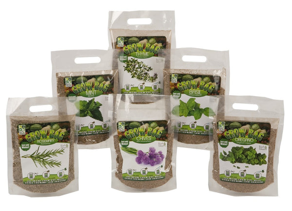 Quick Grow Herbs With Magic Soil in Bag Planter