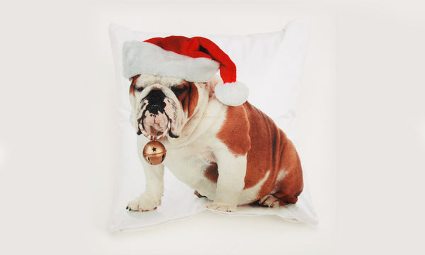 Rapport Christmas Cushion Covers