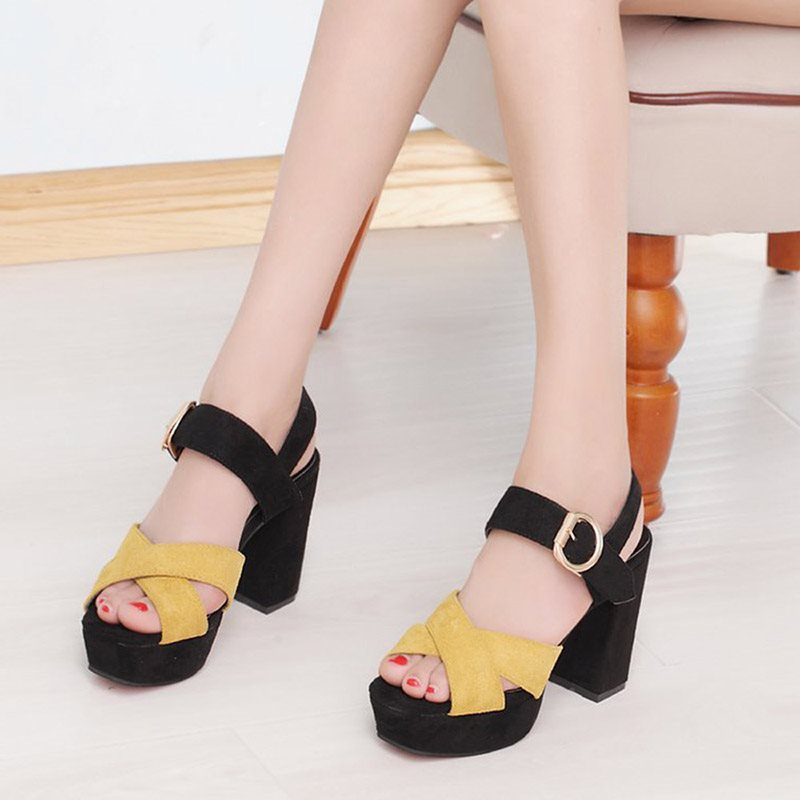 Buckle Ankle Strap Chunky Heel Peep Toe Color Block Platform Sandals