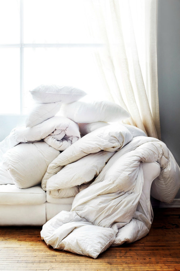 Au Lit Fine Linens - Pillows & Duvets