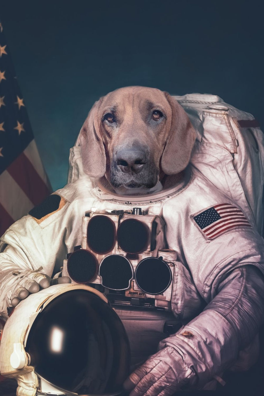 The Astronaut - Custom Canvas Pet Art Work