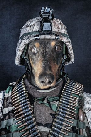 The Soldier - Custom Canvas Pet Art Work