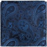 B19 - Blue and Black Paisley Matching Tie