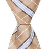 Brown with Blue and White Plaid Matching Tie