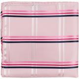 XP33 - Pink with Pink and Navy Stripes Matching Tie