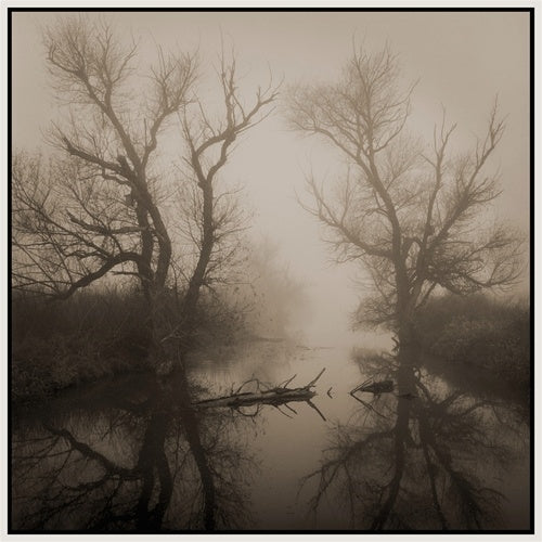 Yolo Slough by Kerik Kouklis-Ansel Adams Gallery